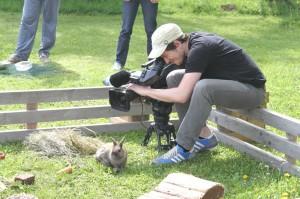 Dreharbeiten Kaninchen