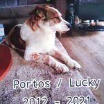 Portos Lucky